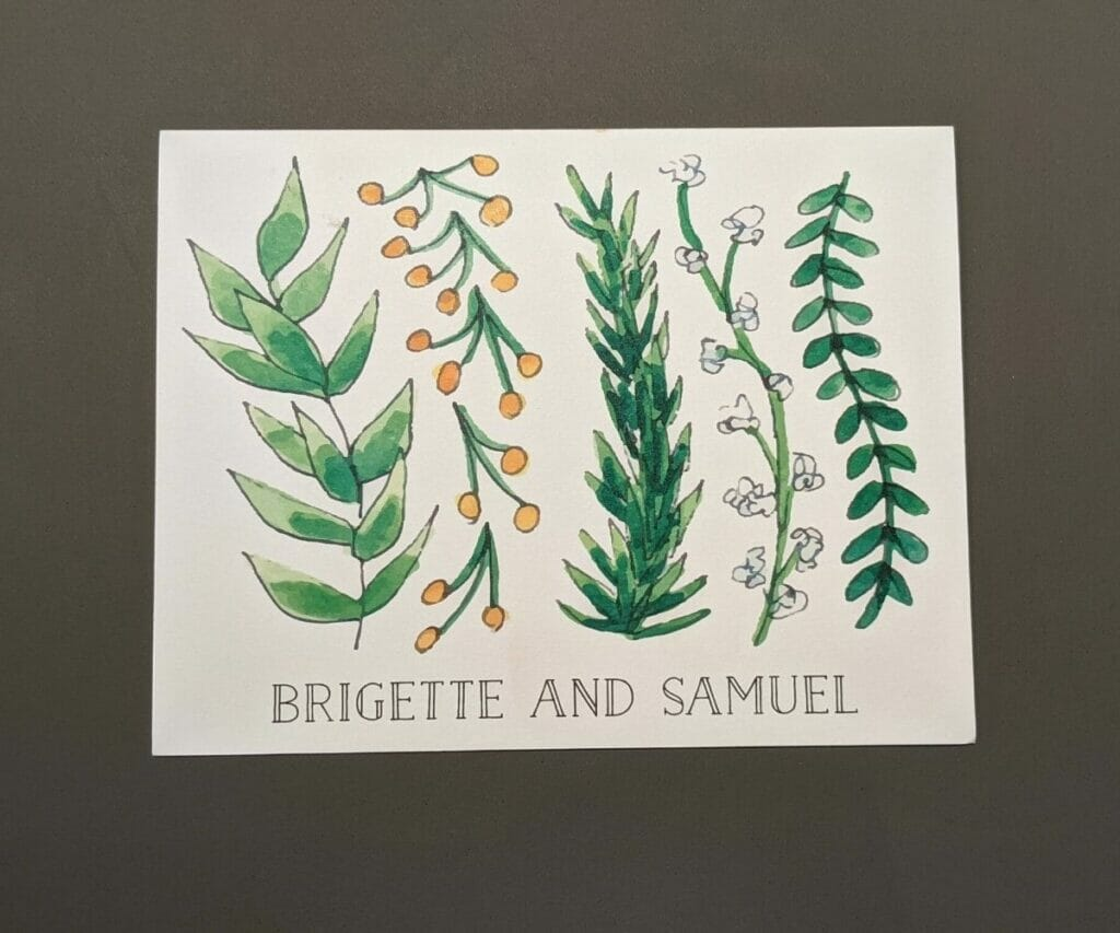 Cute personalized stationery with five different tall watercolor plants on front